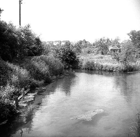 Copy_of_Stonebridge_Pond_lk